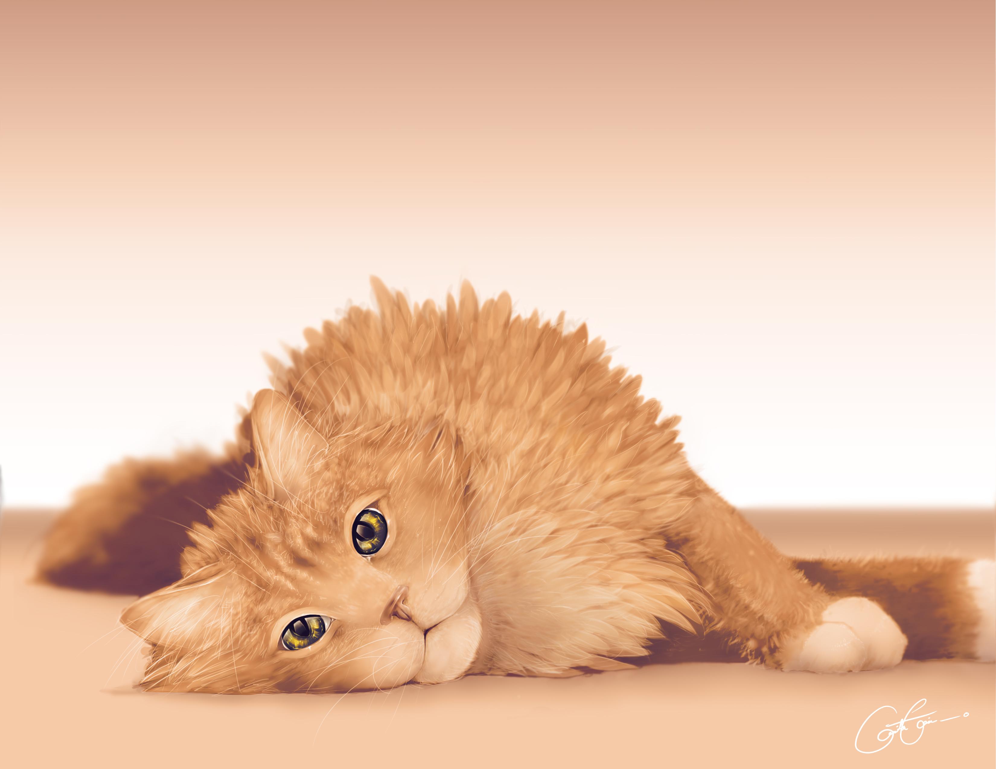 cashmere cat live