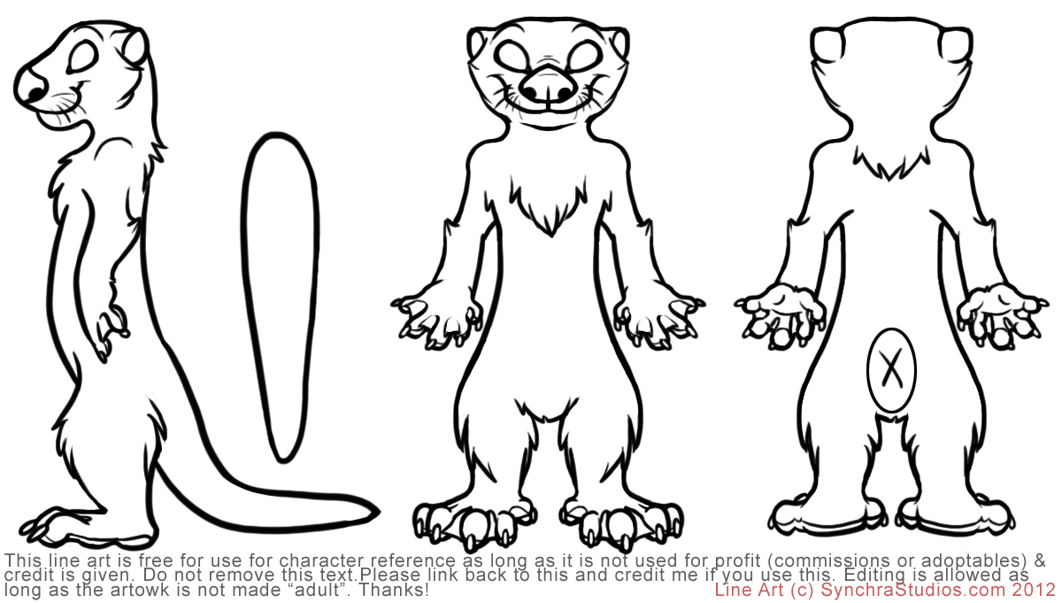 River Otter Coloring Pages. European Otter coloring page | Free ...